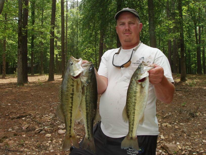 Lake allatoona fishing guide service atlanta bass fishing for Allatoona fishing report
